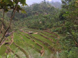jepara-highlands-adventure-5